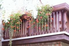 Bilder-Balkon-Erika-II