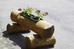 Bilder-Baumstamm-mit-Blumenkasten