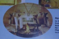 Bilder-Grillpavillon-I